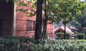Monte Porzio Catone (Rm)